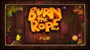1349334012burntheropetop