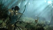 1354334414tombraidersquareenixscreenshot406052012_530x298